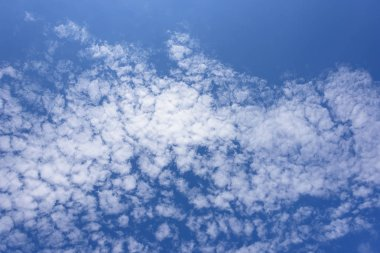 View from below. Blue sky with clouds as a background
