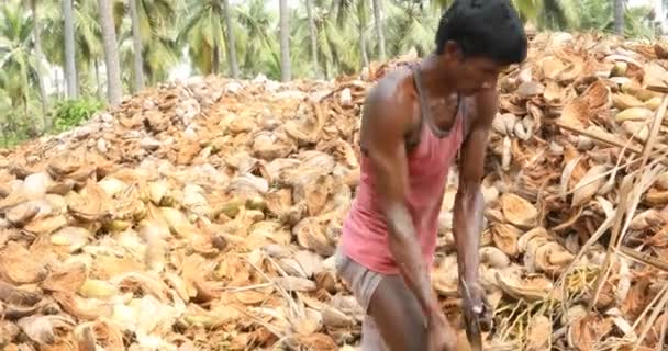 Indian Coconut Factory Workers,30th Jan 2019,Hyderabad,India