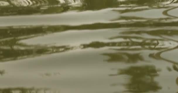 A folyó a víz hullámok