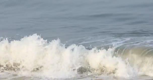 A tenger a víz hullámok