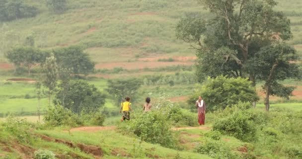 Tribal People at a fields Araku Valley Andhra Pradesh India 25th March 2019