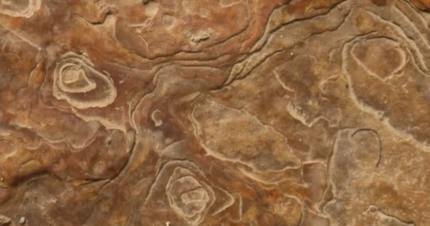 Syrový kámen textura blízká