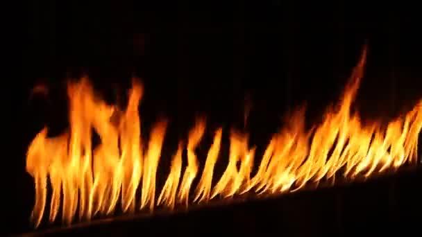 Feuerflamme auf schwarzem Hintergrund
