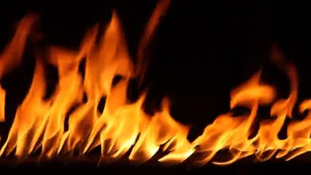 Oheň plamen v černém pozadí