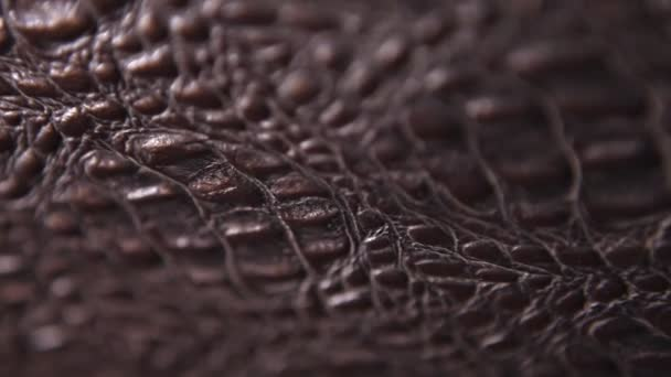 Abstract Leather Texture close up