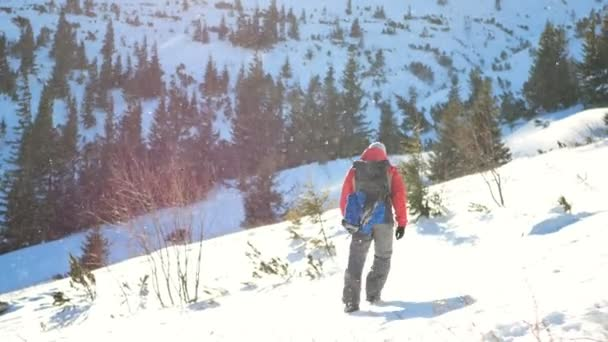 Young male mountaineer walking and stopping on mountain