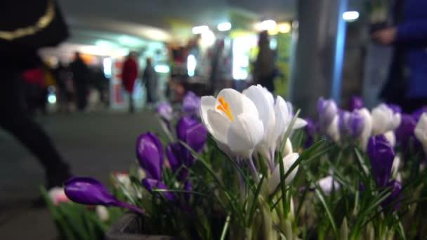 Květiny pouliční trh lidí