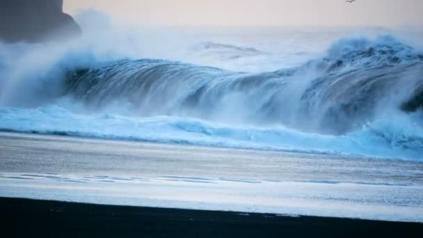 Tengerpart fekete óceán Izland