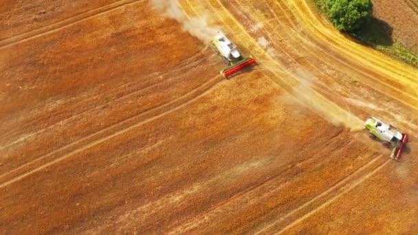 Combine harvester wheat field aerial season