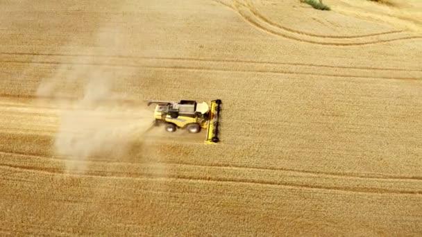 Kombinovat sklízecí pšenice zemědělské pole práce potravinářský průmysl