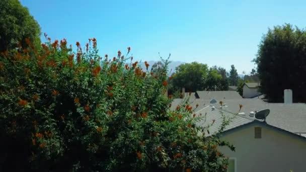 Letecký pohled na hory Svatodušní předměstký okolí. Posuňte dron Panorama. Kalifornie. letět nahoru