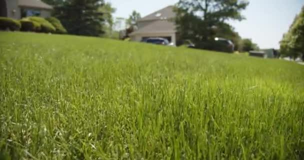 schöne Aussicht auf Vorgarten, grünen Rasenrasen, Nahaufnahme, Zeitlupe