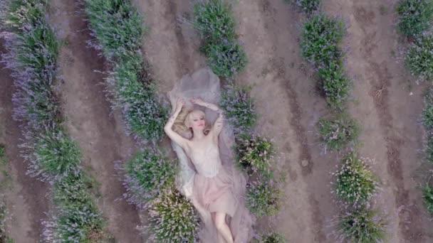 Letecký filmový dron pohled na ženu ležící v barevných levandulových polích na slunečný den kvetoucí fialové květy. Horní pohled V2