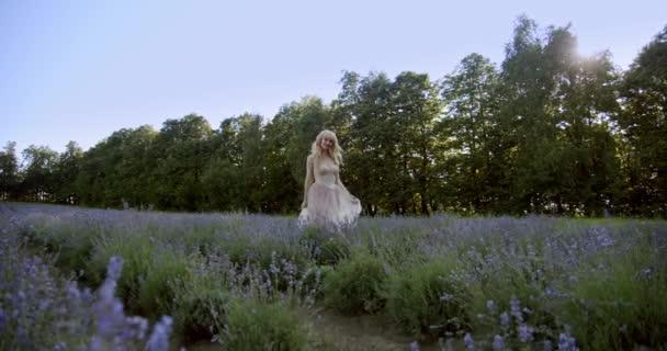 Filmový pohled na ženu kráčející barevné levandulové pole na slunečný den kvetoucí fialové květy.