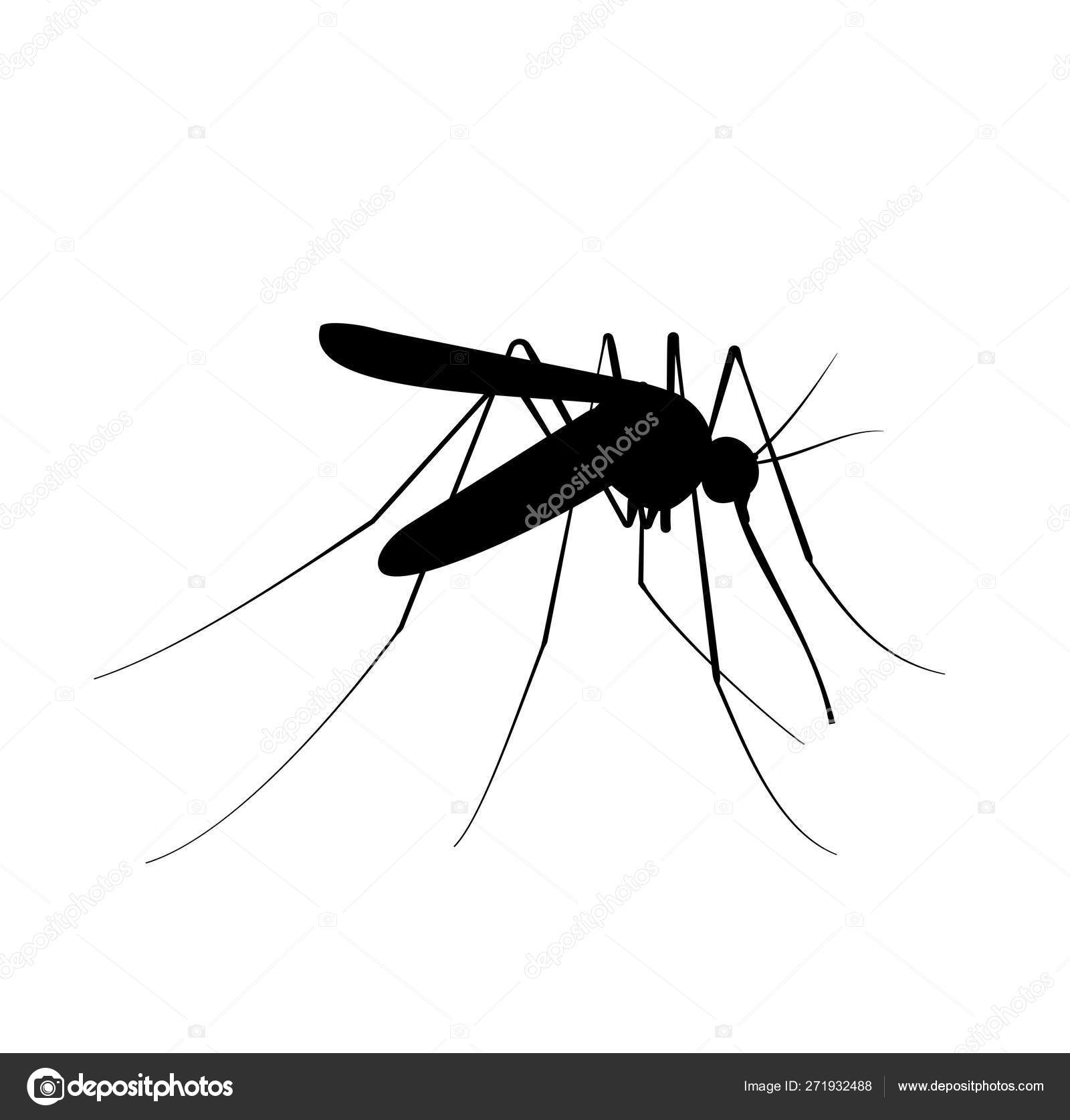 Mosquito black silhouette  Insecticide or insect icon