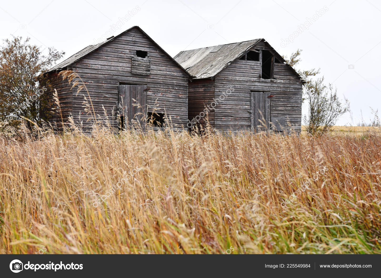 Image Old Run Agricultural Storage Sheds Middle Hay Field