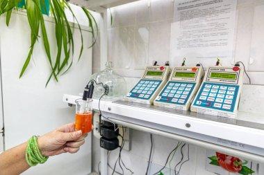 MINSK, BELARUS - 1 JUNY, 2019: checking strawberries for radionu