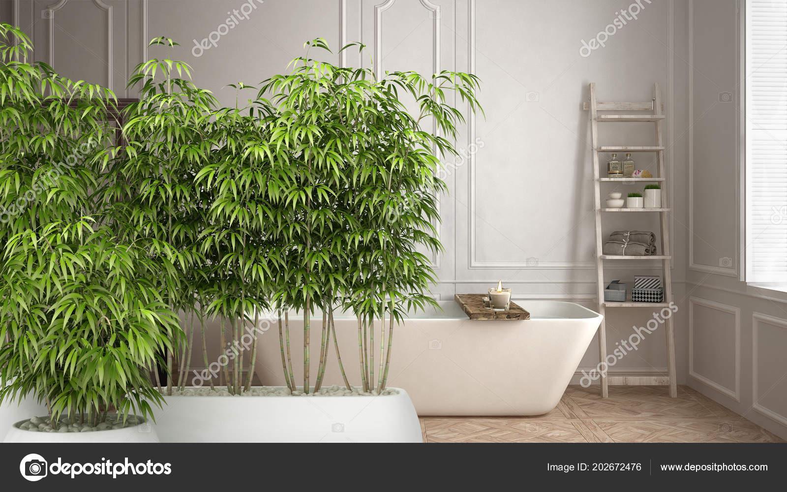 Zen interieur met ingemaakte bamboe plant met natuurlijke