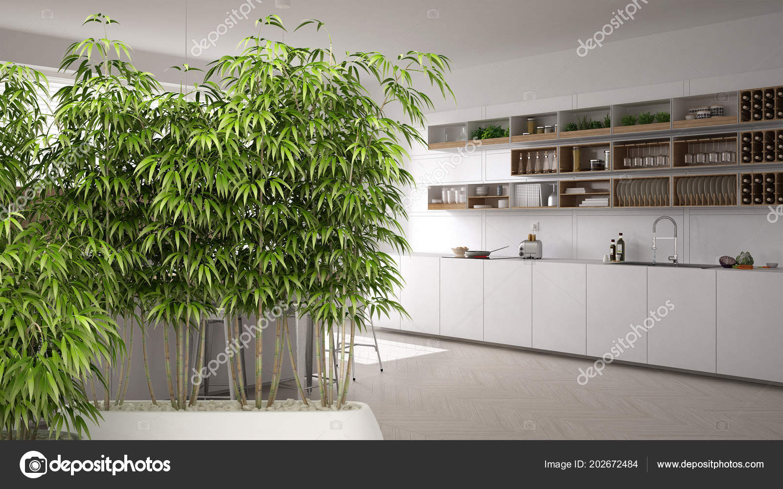 Zen Interior Potted Bamboo Plant Natural Interior Design Concept  Contemporary U2014 Stock Photo