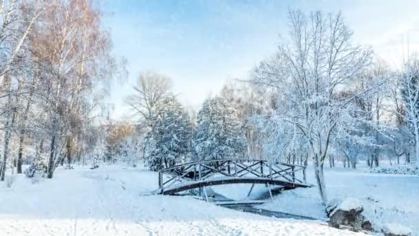 Cartolina dauguri bella inverno con rallentatore nevicata prima neve nel Parco della città con alberi sotto neve fresca allalba. Ponte in una giornata di sole nel Parco della città di inverno