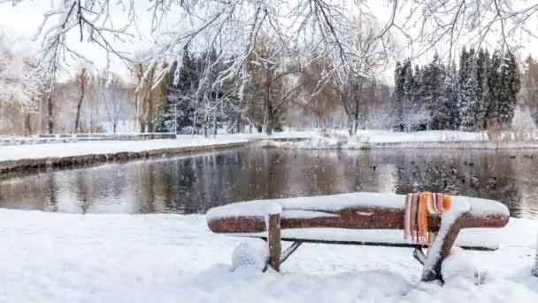 Cartolina dauguri bella inverno con rallentatore nevicata prima neve nel Parco della città con le anatre su un laghetto ghiacciato e una panchina coperta di neve