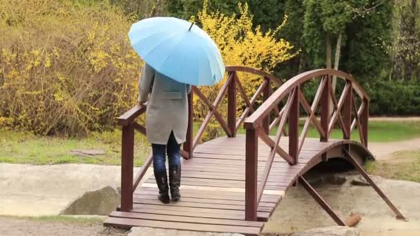 Hezká mladá žena červené hlavy s modrý deštník na mostě na jaře parku. Zelené stromy a pozadí květy Zlatice.