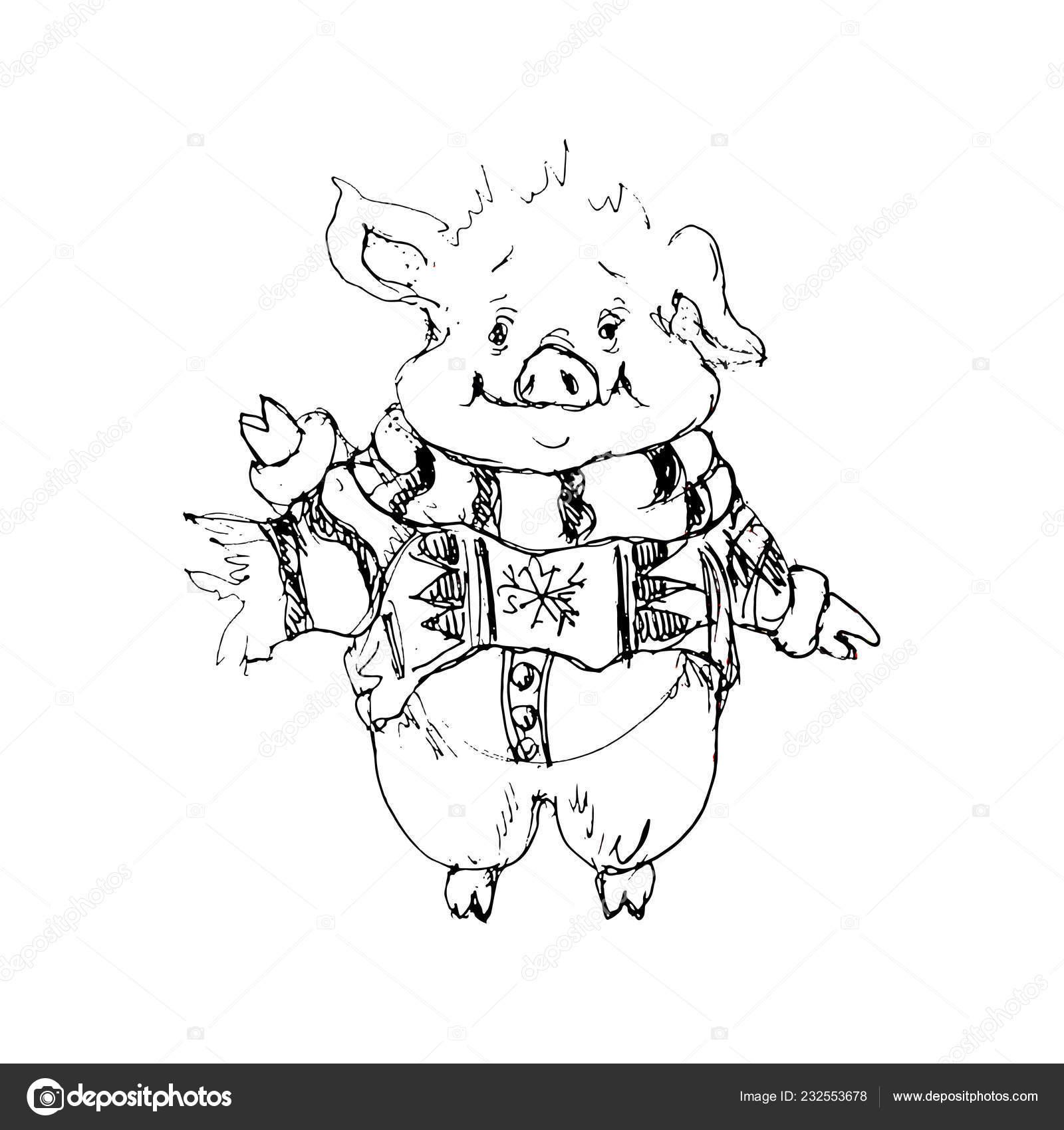 2019 Chinese New Year Symbole Santa Cochon Dessin Animé