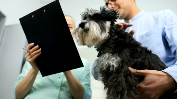 Veterinarian explaining treatment to dog owner at clinic