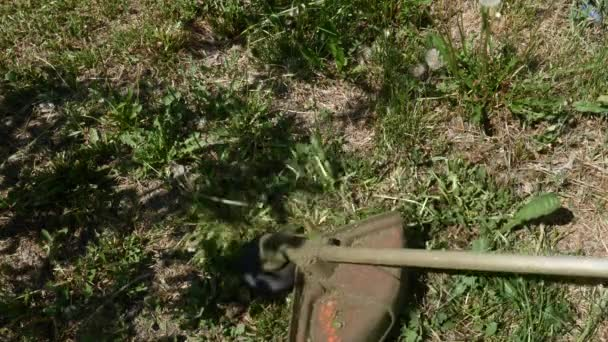 Gardener cutting grass by lawn mower. Close up of lawn mower at the front yard.