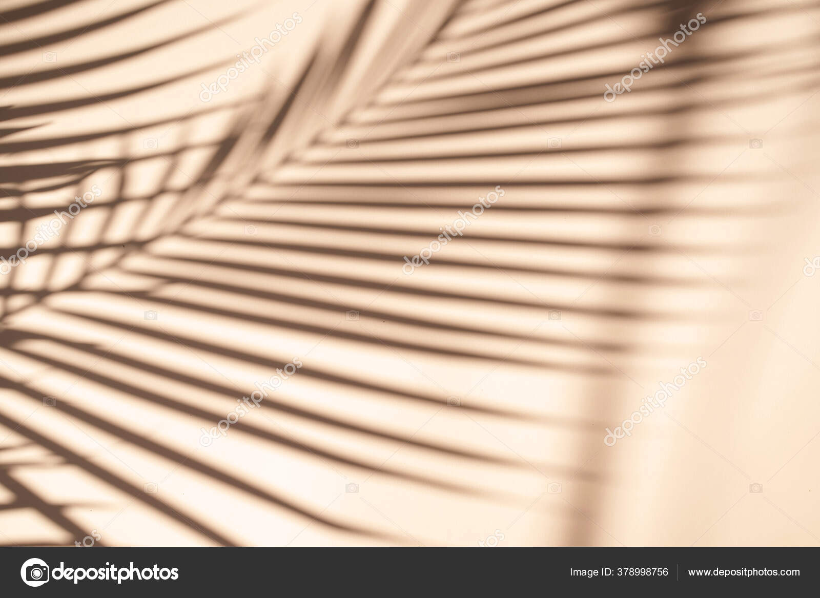 Tropical Palm Leaves Natural Shadow Overlay Orange Texture Background Overlay Stock Photo C Nuchylee 378998756 30 realistic tropical leaves pack is one of the best realistic tropical leaves overlays. https depositphotos com 378998756 stock photo tropical palm leaves natural shadow html