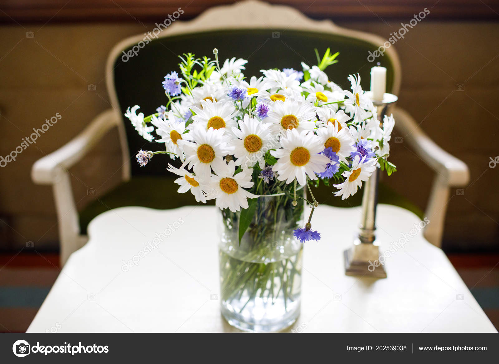 Beautiful Bouquet Chamomile Flowers — Stock Photo ... on