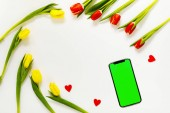 Tavaszi virágok banner. Boldog anyák napja képeslap. Tavaszváró. Boldog húsvéti üdvözlőlap.