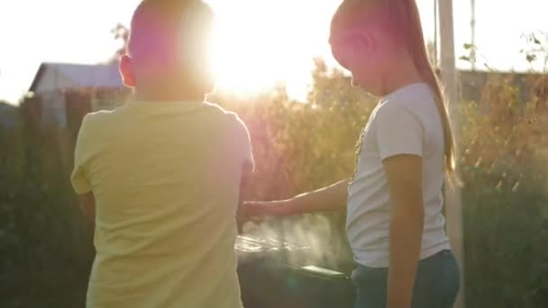 Bratr a sestra dělá grilování na grilu na zelený trávník