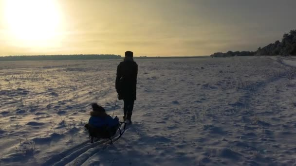 Kleiner Junge eine Pferdeschlittenfahrt genießen. Mutter Schlitten seine niedliche Kind. Familien-Winter-Aktivitäten im Freien. Glückliche Familie Spaß im freien.