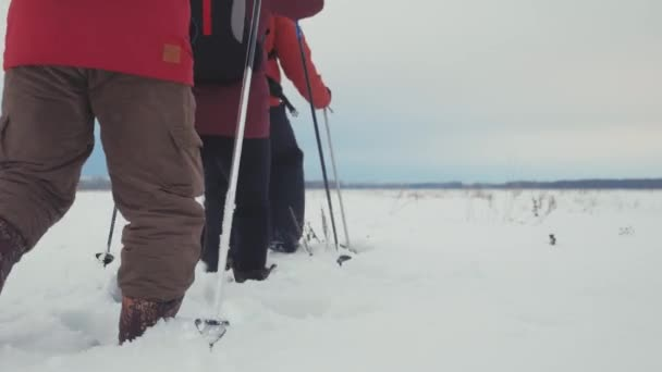 Back view of three tourist hikers with trekking poles, a backpack and snowshoes. Happy hikers group with a backpack walking through in winter trip. Extreme sport, recreation. Teamwork concept.