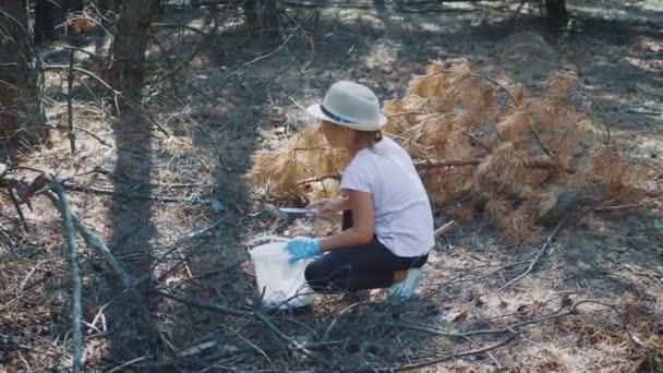 Kislány gyűjteni gombát az erdőben egy napsütéses napon. Gomba szedés, szezon gomba. Szép lány kosár válogatott friss ehető gomba. Költési idő szabadban.
