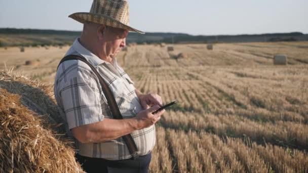 Starý farmář používá tabletu na poli vedle kupky sena při západu slunce. Inteligentní zemědělství, využití moderních technologií v zemědělství.