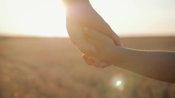 Matka a malý syn se drží za ruce do západu slunce. Dítě má důvěru pro matku, rodinný koncept.