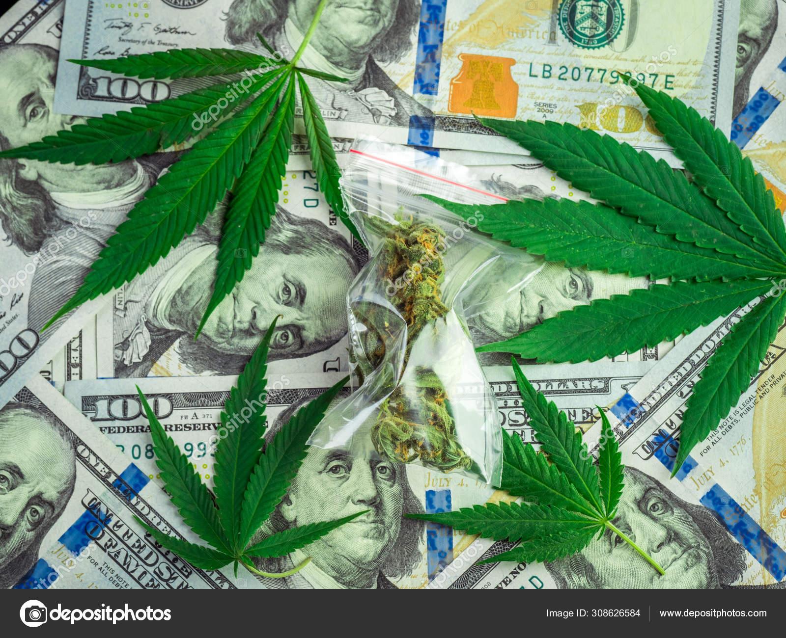 Пакет марихуаны песня о марихуане на латыни