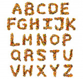 English alphabet from a mixture of hazelnuts, almonds, walnuts, cashews, seeds, raisins, candied fruit on a white isolated background. Food pattern made from nuts.
