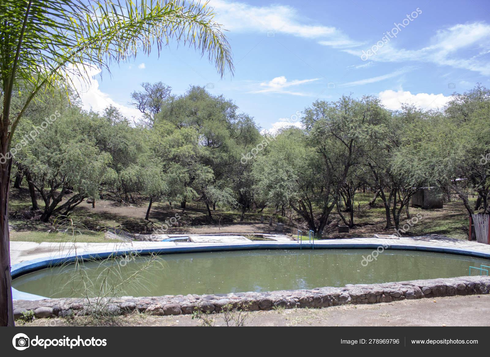 Dirty green water pool — Stock Photo © nailotl@hotmail com #278969796