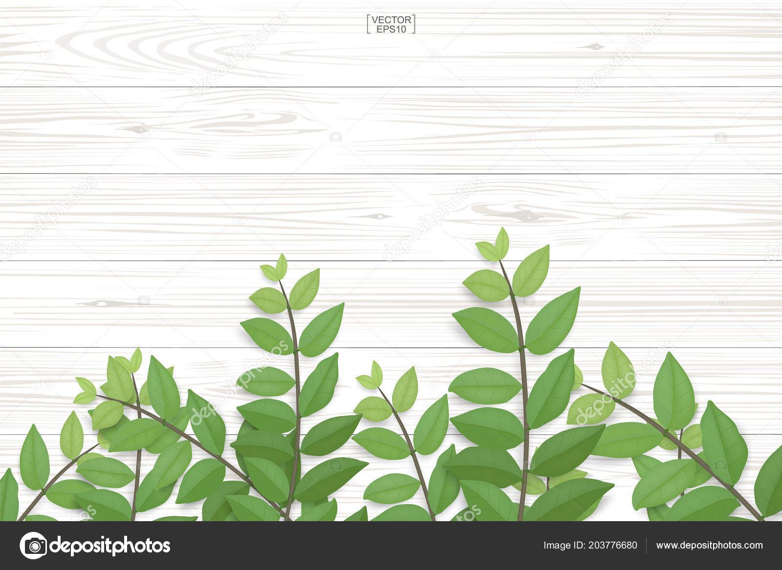 Wood Plank Pattern Texture Green Leaves Natural Background