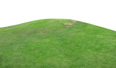 Green hill of grass field isolated on white background with clipping path. stock vector