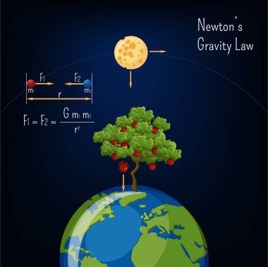 Newton's Gravity law infographic with Earth globe, moon, apple tree and basic diagram. Physics, science for kids. Cartoon style vector illustration.