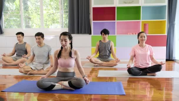 Skupina mladých a předních asijských lidí, kteří navštěvuje třídu jóga, se protahuje. Skupinový styl sportu.