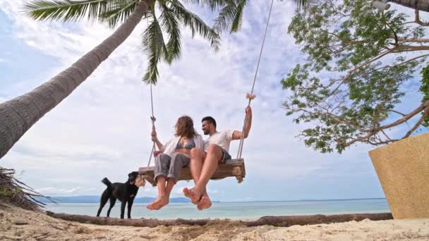 A young couple swinging on a swing and petting a dog on a tropical beach. The couple in love on a beach swing by the sea in Southeast Asia. Play with dog