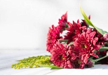 Beautiful red fresh chrysanthemum flowers boquet on white wooden background