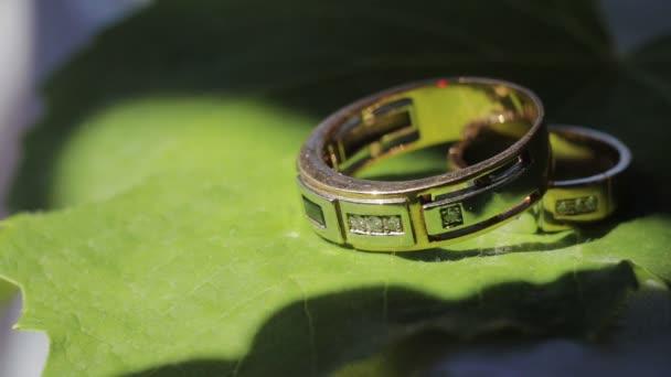 Snubní prsteny leží na zelený list list, detail