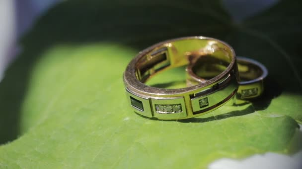 Wedding rings lie on a green leaf sheet, close-up