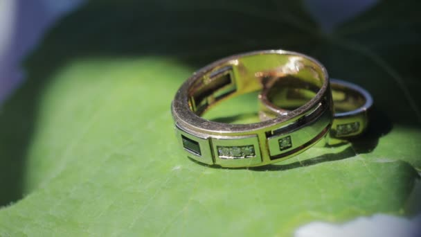 Wedding, wedding rings on a green leaf of a flower, close-up. The concept of wedding, Celebration and festivity